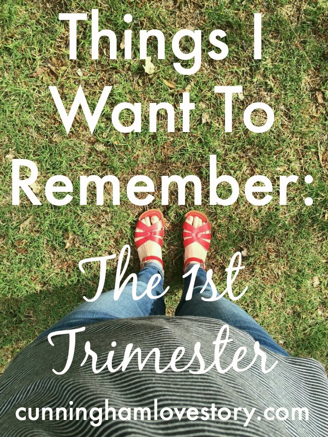 Things I Want To Remember: The 1st Trimester
