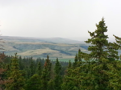 Horseshoe Canyon Viewpoint, Cypress Hills Provincial Park