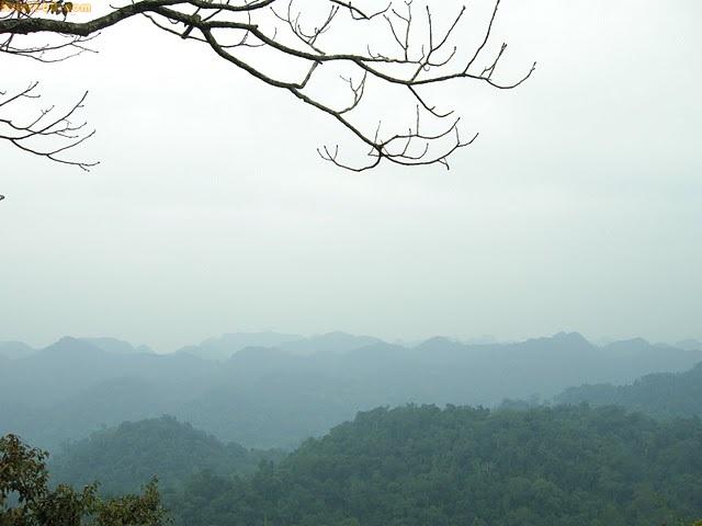 Hình ảnh đẹp về Ninh Bình - danh lam thắng cảnh, rừng Cúc Phương