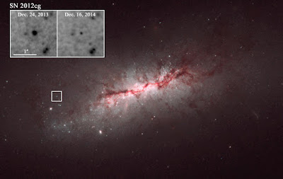 The prolonged death of light from type Ia supernovae