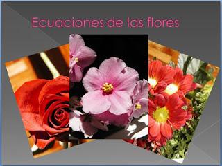 Ecuaciones de las flores