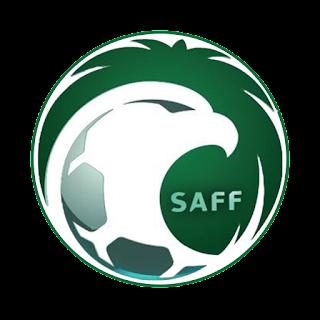 Saudi Arabia logo 512x512 px