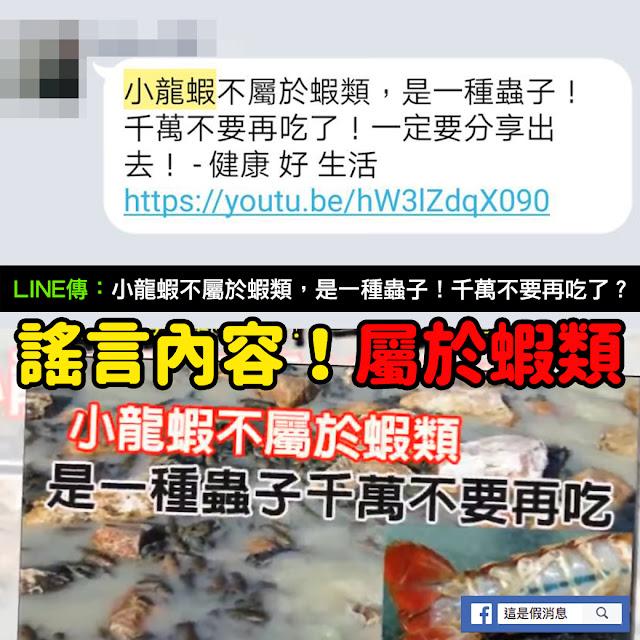 小龍蝦不屬於蝦類 是一種蟲子 日本 謠言