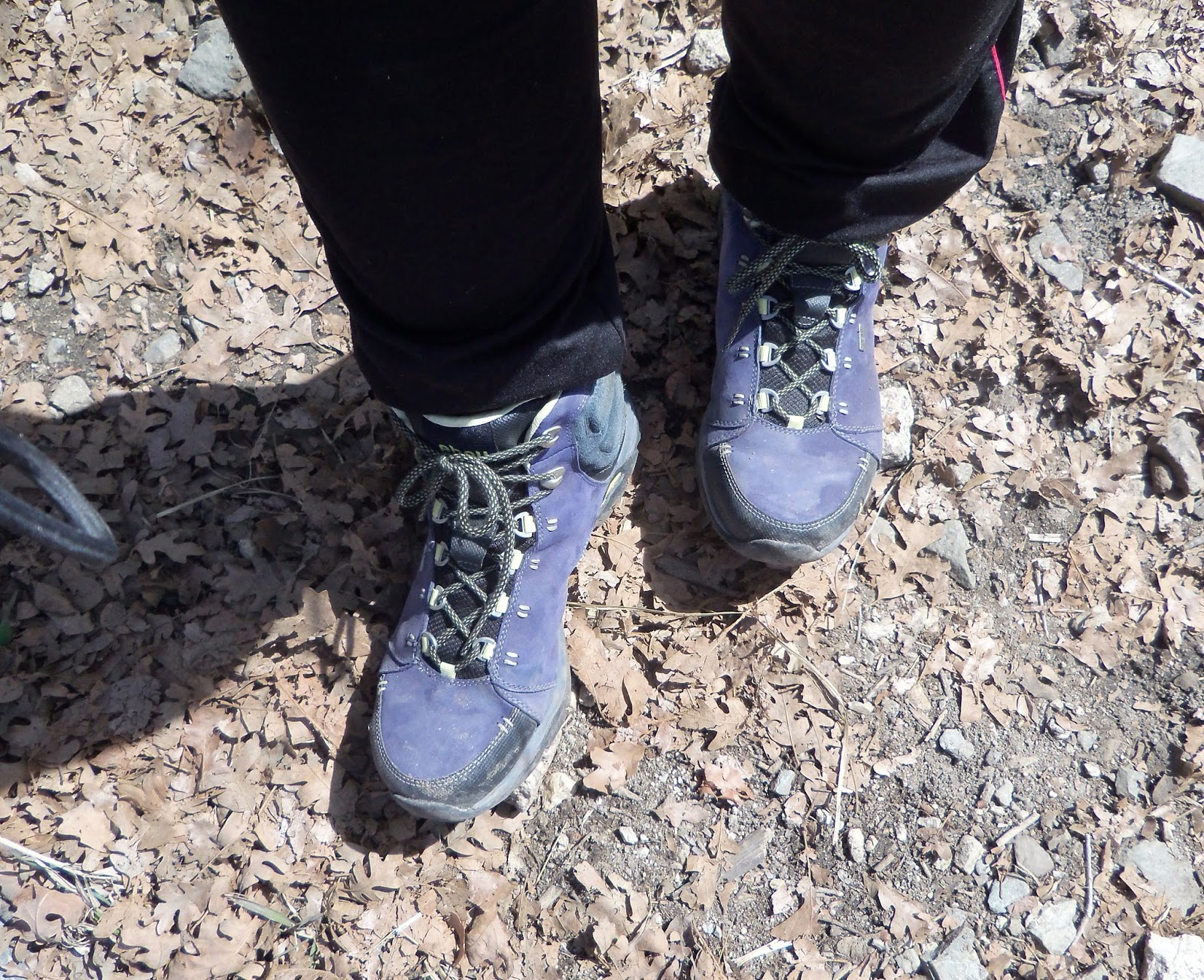 53e6dea019f Review: Montara Women's Hiking Boots