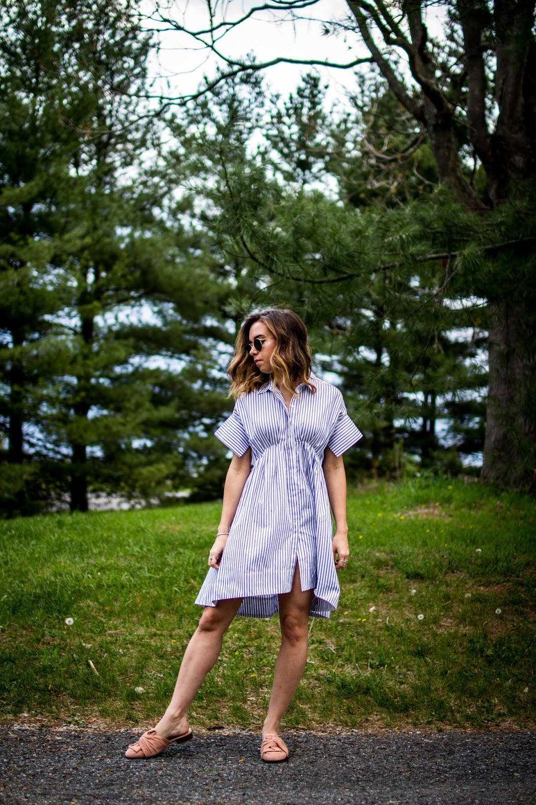Shirtdress-dcblogger-A-Viza-Style-casual-spring-style-victoria-beckham-target-shirtdress-bylot-louise-et-cie