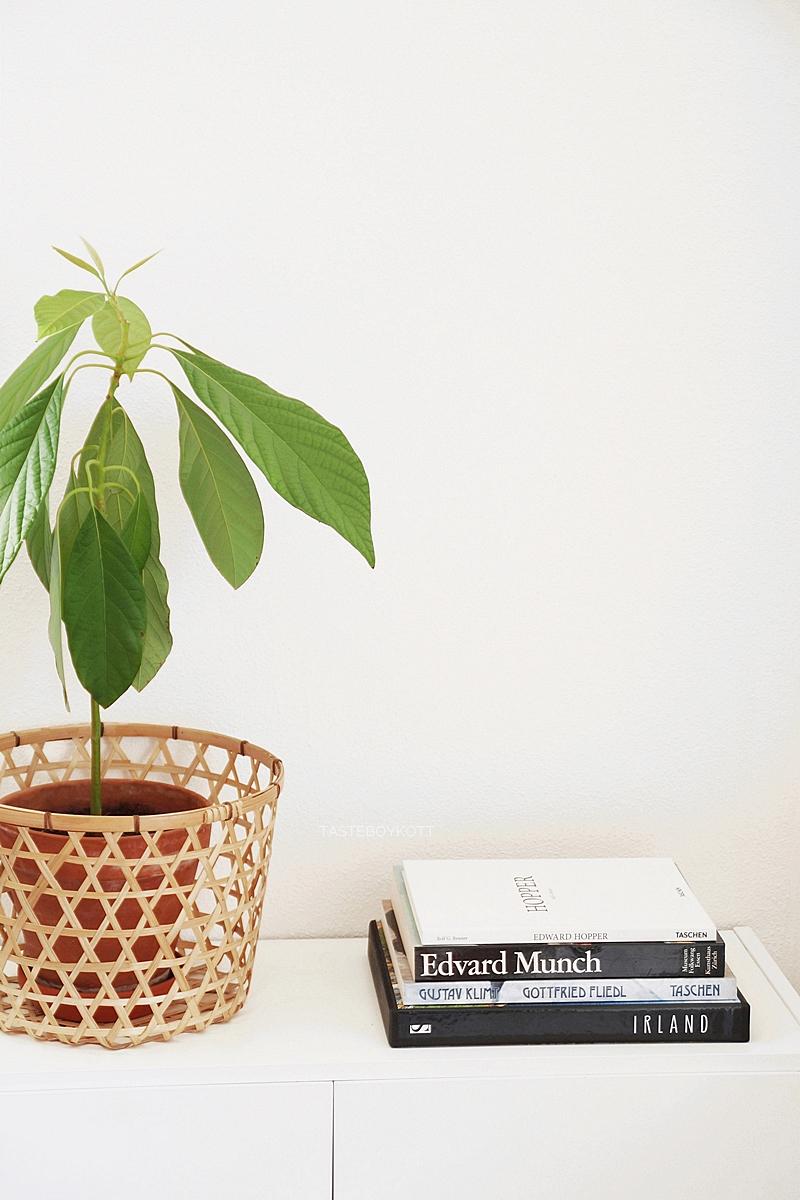 Sommerdeko im reduzierten Urban Jungle Stil: Kommode modern, skandinavisch und schlicht dekorieren mit Avocadopflanze im Korb und schwarz-weißen Bildbänden