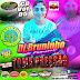 CD BRUNINHO DO COMERCIO NA PRESSAO 2019 VOL 05