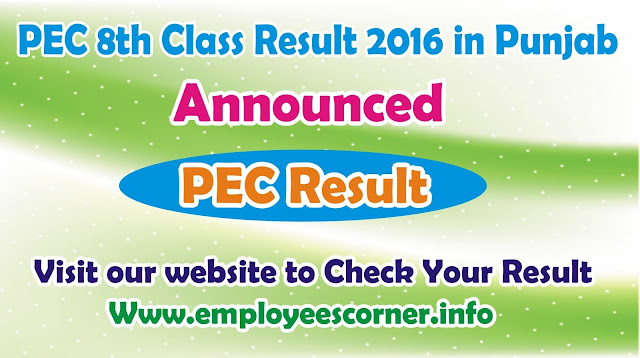 PEC 8th Class Result 2016 in Punjab Announced for All Districts