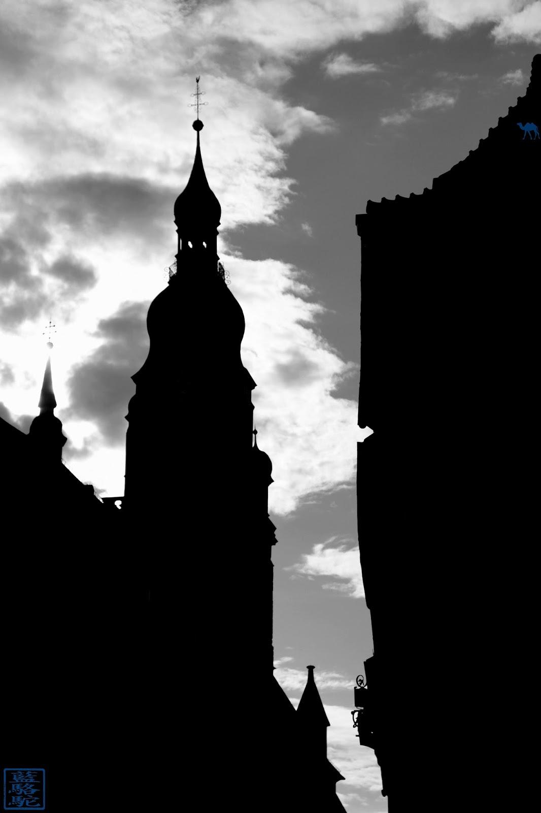 Le Chameau Bleu - Blog Voyage Heildeberg Allemagne -  Ombre d'Heidelberg - Allemagne