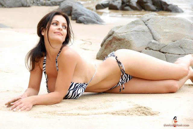 Denise Milani Beach Zebra HD Sexy Photoshoot Hot Photo 28