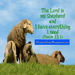 The Lord is my shepherd and I have everything I need. (Psalm 23:1)