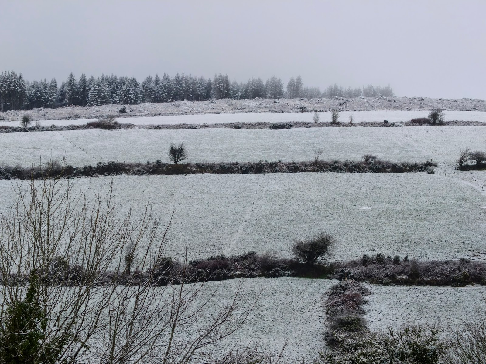 A hillside in the Boggeragh Mountains dusted with snow.