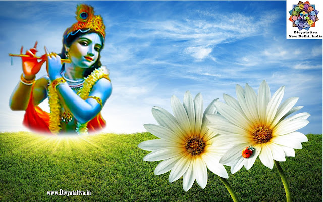 lord krishna ,hd 1080p  hd images of lord krishna with radha , radha krishna hd wallpaper for mobile