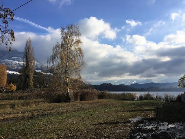 Blick ins Ried im November, etwas Schnee und viel Wasser