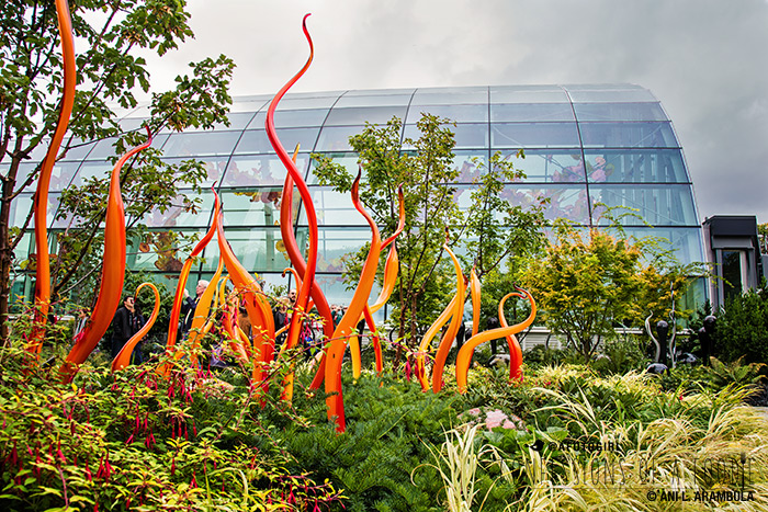 Confessions of a Foodie: { Travel } Exploring Seattle\'s Chihuly ...