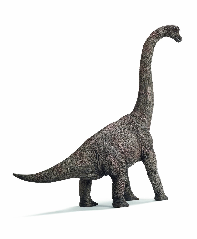 Discover Dinosaur