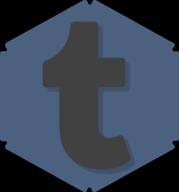 tumblr hexagon icon