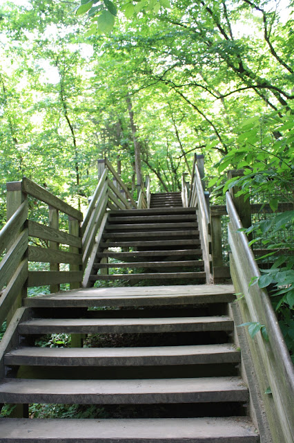 Wooden Stairs at Starved Rock