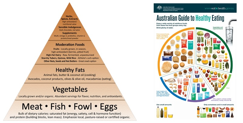 Paleo diet vs australian dietary guidelines the new primal blueprint food pyramid sissons 2011 and the australian guide to healthy eating eat for health 2017 malvernweather Choice Image