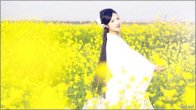 ảnh cô gái trong vườn cải vàng