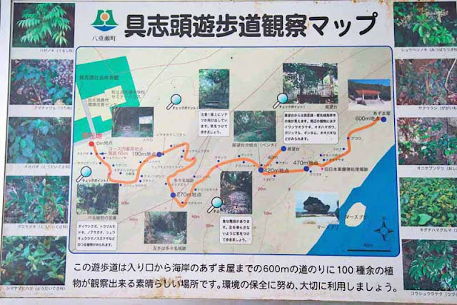 Japanese, map, sign, Horohoro Forest, park, trail, Okinawa