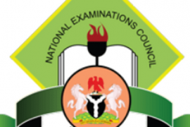 2017 Neco June/July Results Released, See How To Check Results