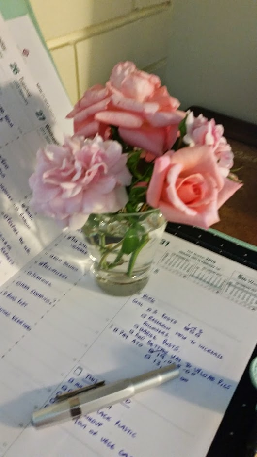 I picked roses for my desk today