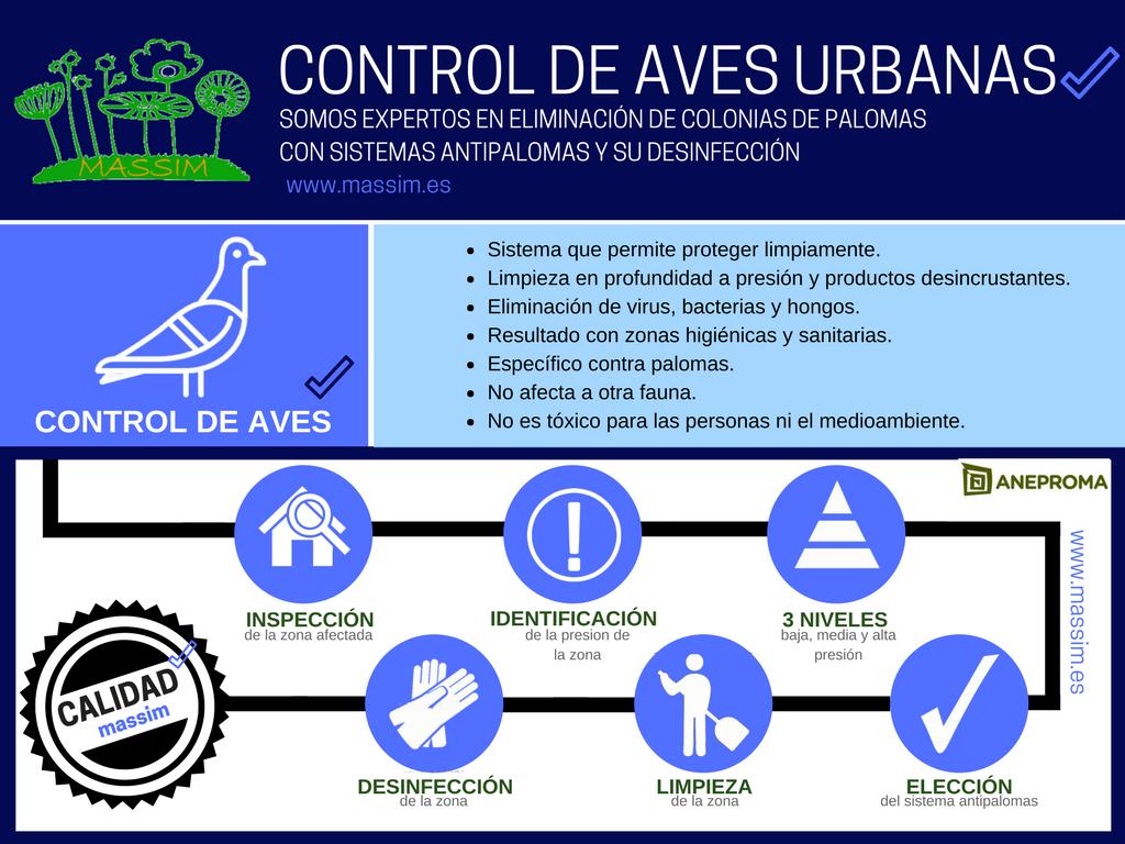 control aves valladolid sistemas antipalomas