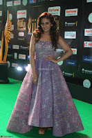 Parul Yadav in Stunning Purple Sleeveless Transparent Gown at IIFA Utsavam Awards 2017  Day 2  Exclusive 12.JPG