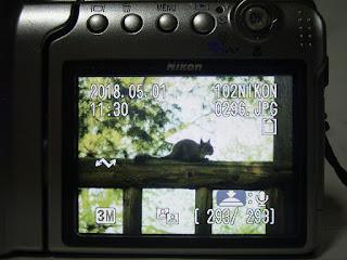 ニコン・COOLPIX S4 画面表示