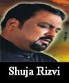 http://www.humaliwalayazadar.com/2016/09/shuja-rizvi-soz-salam-marsia.html