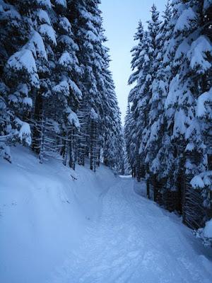 snežna idila na Golteh