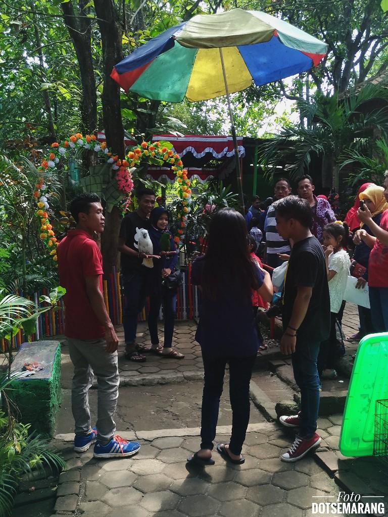 Melihat Bisnis Foto Di Taman Margasatwa Semarang Selama Libur Lebaran
