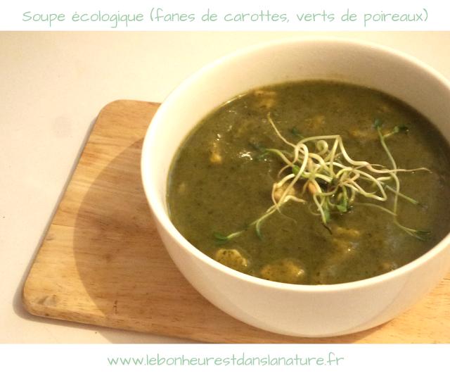 Soupe verte écologique aux fanes de carottes et verts de poireaux