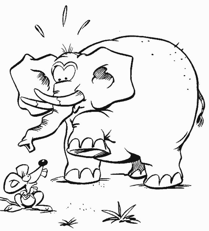 Download 650 Koleksi Gambar Gajah Dan Kancil Terbaik