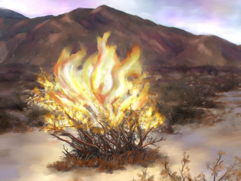 Hausdorff's Bible Blog: Exodus 3: Moses and the Burning Bush