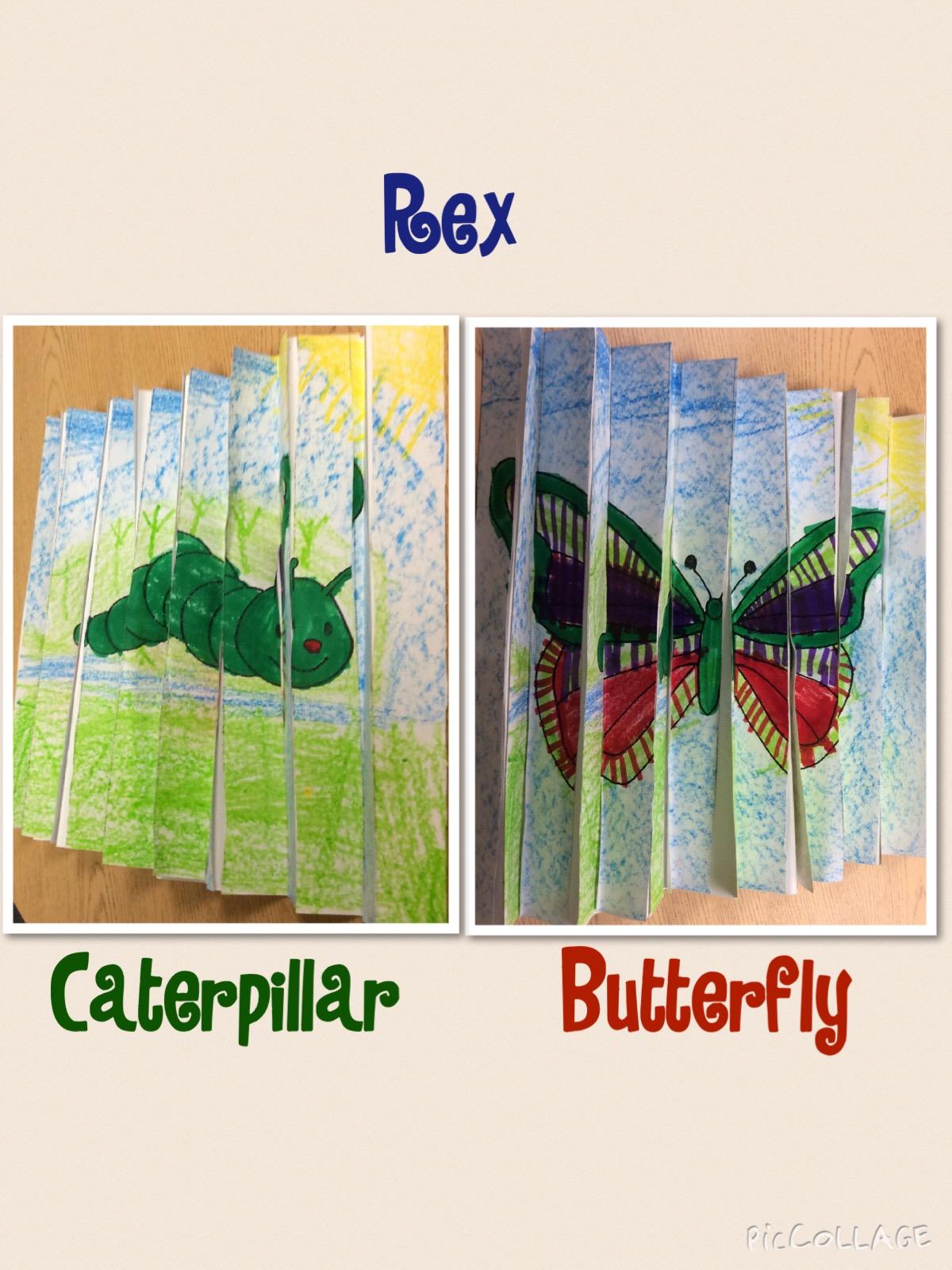 Mrs T S First Grade Class Butterfly Op Art