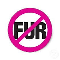 Help Make Fur History in Israel!