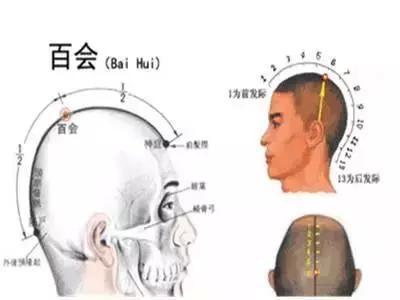 最全的頭部穴位按摩圖。醒腦提神治脫髮。不收藏是你的損失! - 穴道經絡引導
