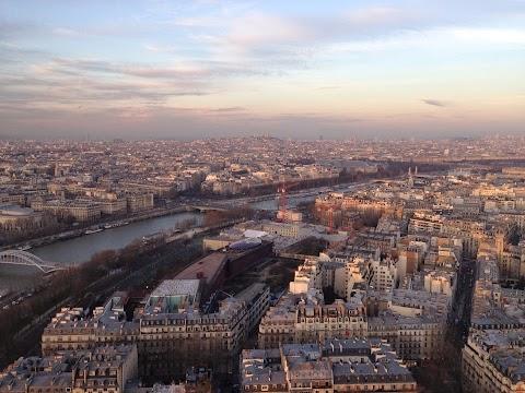 Paris ... et ses pigeons