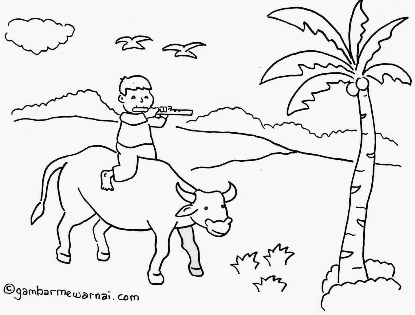 Daftar Gambar Mewarnai Untuk Anak Sd Kelas 3