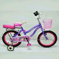 16 wimcycle light ctb sepeda anak