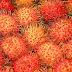 Resepi Jeruk Rambutan Asam Boi Yang Menyengat Kepedasan Dalam Kemasaman