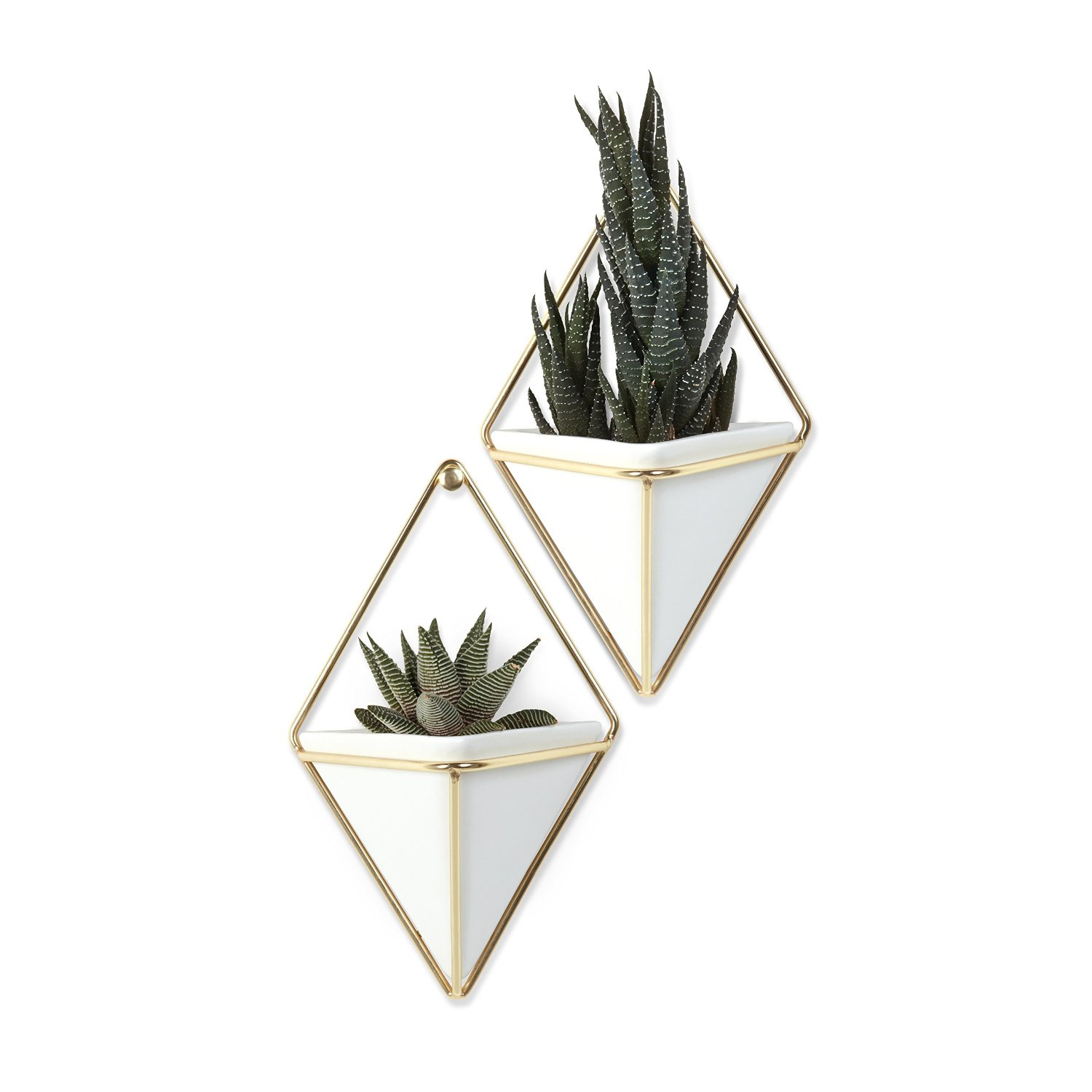 14 Ways to Display Succulents - Wall Pockets