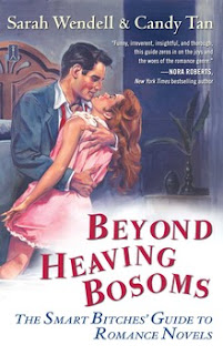 Beyond Heaving Bosoms by Sarah Wendell and Candy Tan | Two Hectobooks