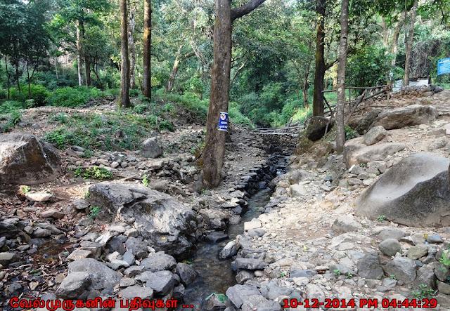 Pinnappara Kerala