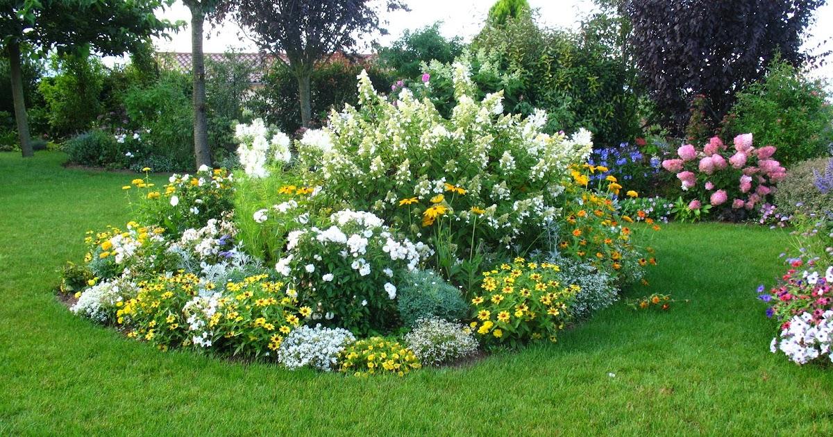 Roses du jardin Chêneland: Rosier