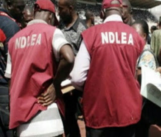 NDLEA Threatens Passenger Because He Refused To Give $100