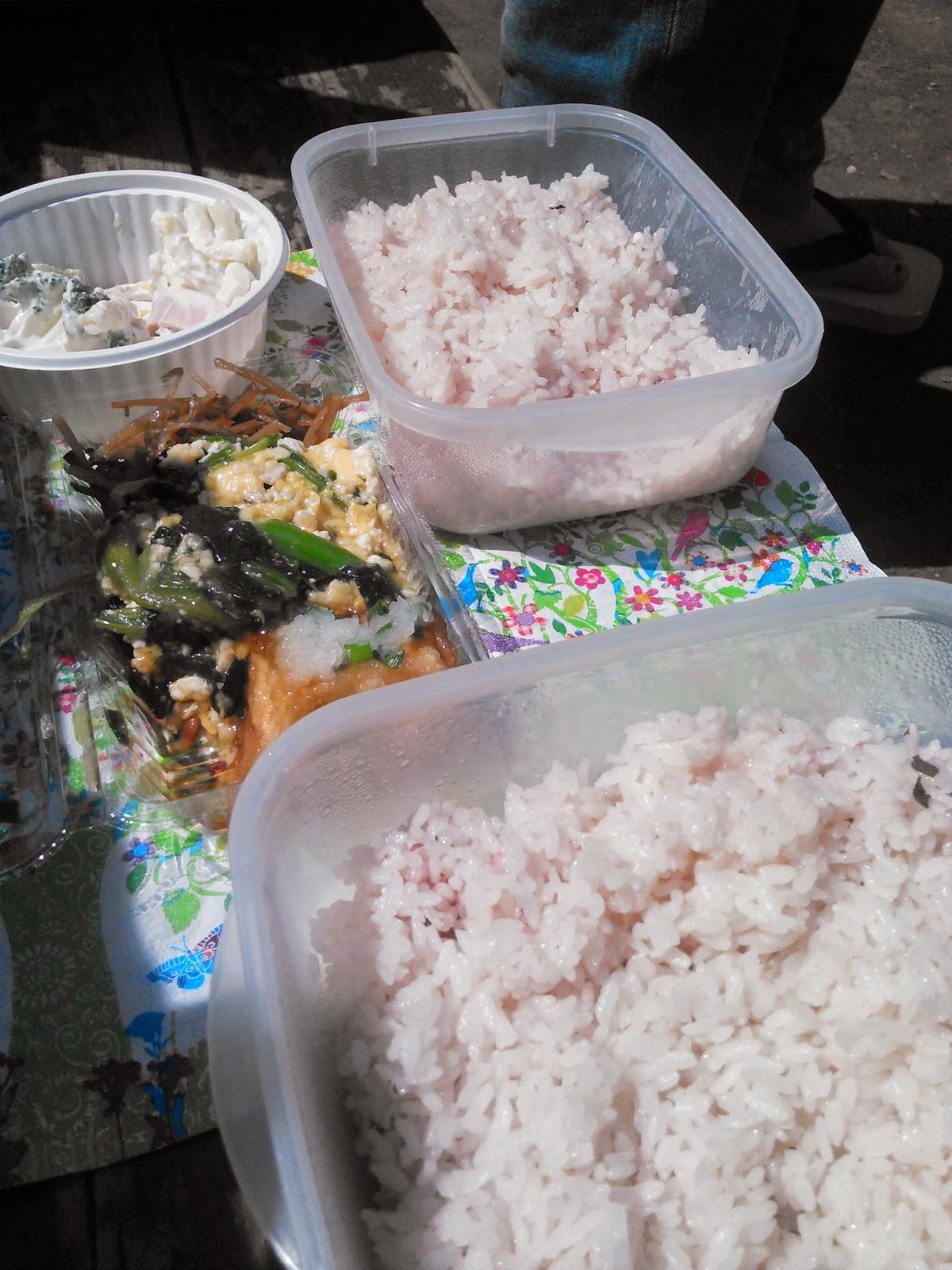 羽根木公園にて、桜ご飯食べて、ピクニックしました。