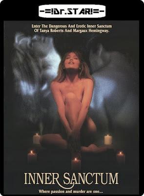Inner Sanctum 1991 Dual Audio DVDRip 300Mb x264